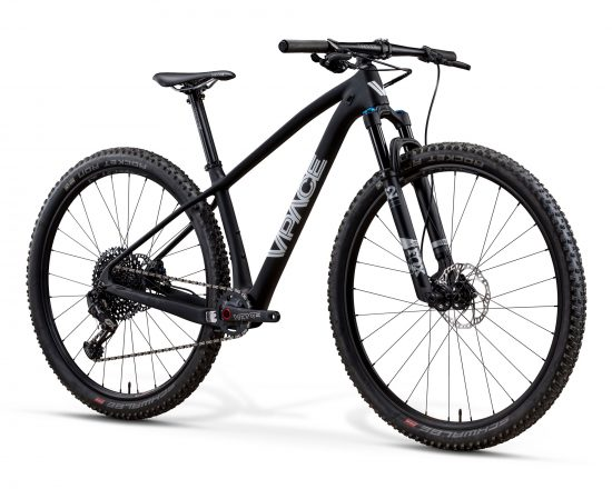 VPACE MAX29 Kinderbike Carbon-Edition